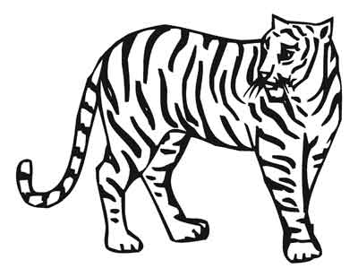 Coloring book zoo animals