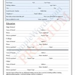 Job Application Form - Premium