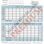 Employee Timesheet Bundle - Premium