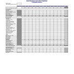 Cash Flow Worksheet - Business