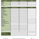 Income Expense Sheet for Couples/Roommates